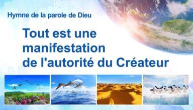 « Tout est une manifestation de l'autorité du Créateur »